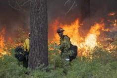 Firefighter Keith McMillen at a controlled burn in Washington state. (David Ryder/Reuters)