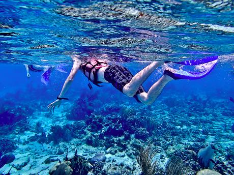 Screen Shot 2014 08 08 at 11.25.26 AM Dream Destination   Belize, Part 1