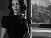 WITH YOUR BEST SHOT: Suddenly, Last Summer