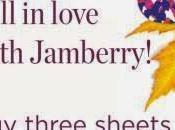 Jamberry Nail Wraps: Save Shipping! (US/CDN)