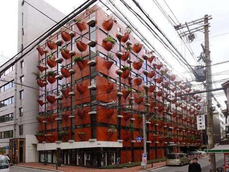 Experimental Japanese buildings 8