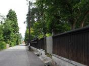 深緑鮮やかな武家屋敷,横手市羽黒町 Yokote, Samurai Residences Make Beautiful Contrast with Deep Green Leaves.