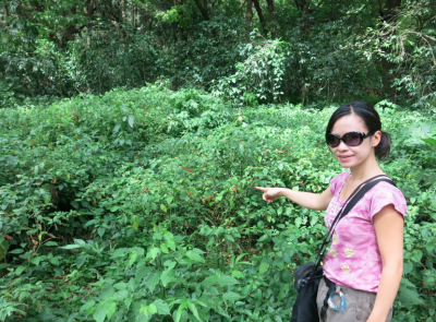 Panny at the coffee plantations.