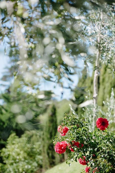 Michelle Hepburn Wedding Photography61