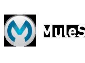 Mule SFTP Verify False Error