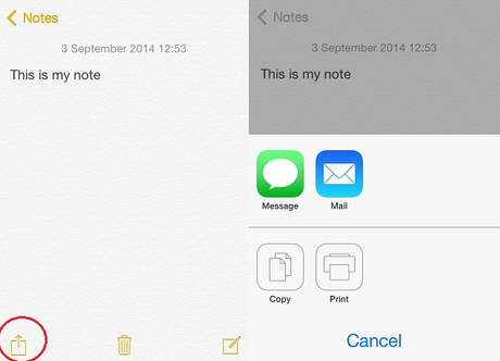 Share Your iPhone Notes