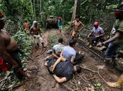 PHOTO REPORT: Amazon Indian Warriors Beat Strip Illegal Loggers Battle Jungle's Future